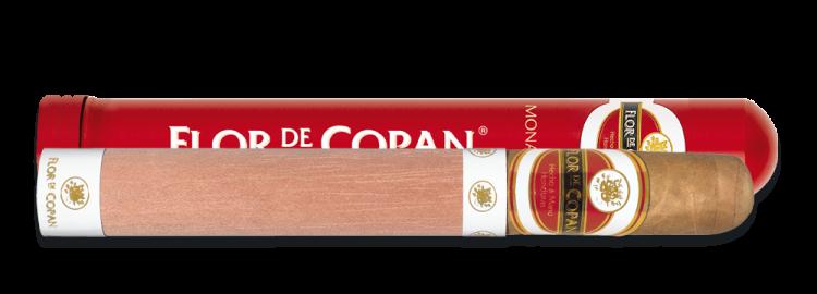 FLOR DE COPAN MONARCHAS TUB (1)