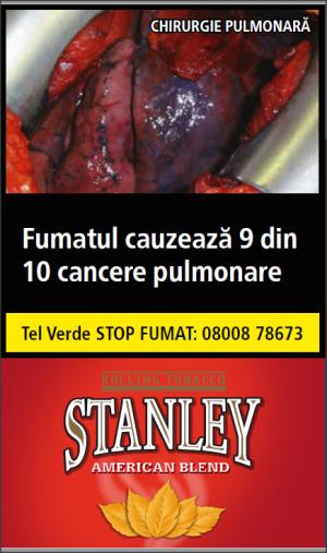 Tutun de rulat Stanley American Blend