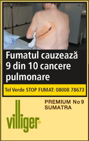 Premium No 9 Sumatra (10)