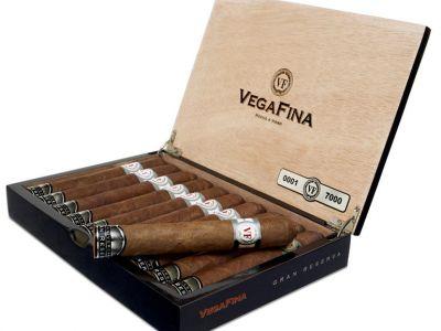 Vega Fina Gran Reserva 2019 (10)